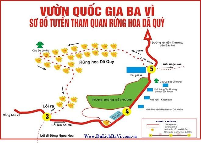 Bản đồ chỉ dẫn thăm quan ngắm hoa Dã Qùy ở Vườn Quốc Gia Ba Vì