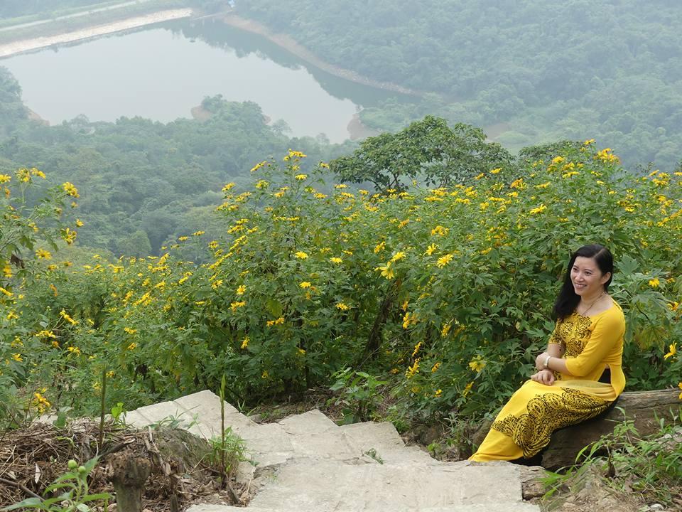 Cảnh Hoa Dã Qùy ở vườn quốc gia Ba Vì