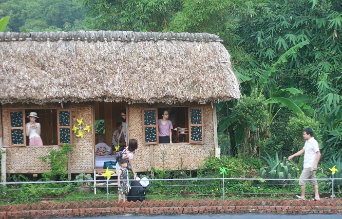 HomeStay ở Đồi Chong chóng Ba Vì