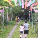 Đồi Chong Chóng Ba Vì điểm du lịch cắm trại mới nổi gần Hà Nội