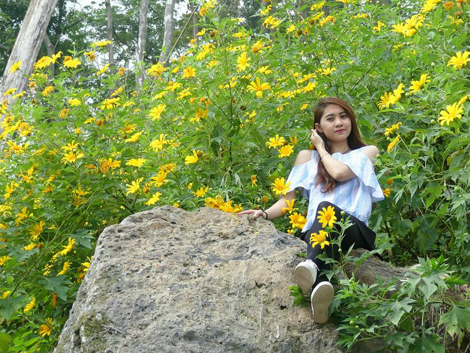 Ảnh du khách chụp hoa Dã Qùy 2016