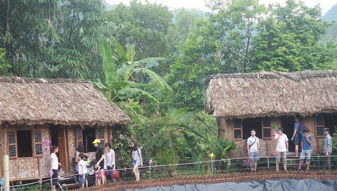 Nhà HomeStays ở đồi chong chóng Ba Vì